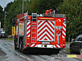 Sojaspoor zorgt voor problemen in Wevelgem