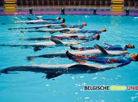 Twee baby-dolfijntjes voor het eerst te zien in Nocturne AquaShow