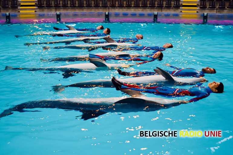 aquashow2015-trainers1akopie