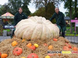 Zwaarste pompoen van Europa te zien tijdens Halloween Fiësta Mortal in Bellewaerde