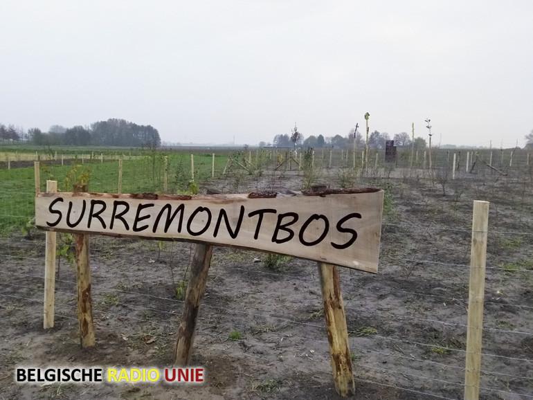 Het nieuwe Surremontbos in Otegem valt in de prijzen