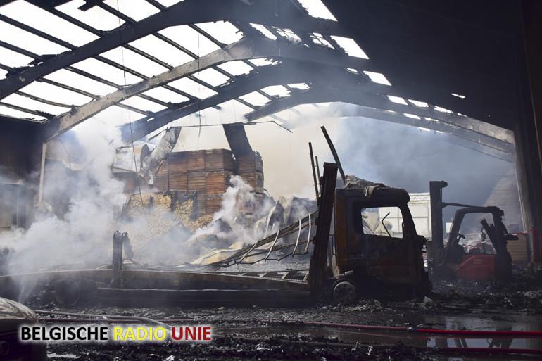 Zware brand vernielt witloofkwekerij