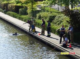 Brandweer zoekt anderhalf uur tevergeefs in Kleine Bassin in Roeselare naar mogelijk slachtoffer