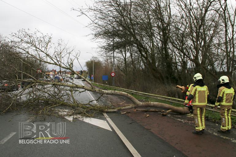 In de regio Kortrijk-Menen-Waregem waren er diverse oproepen voor stormschade