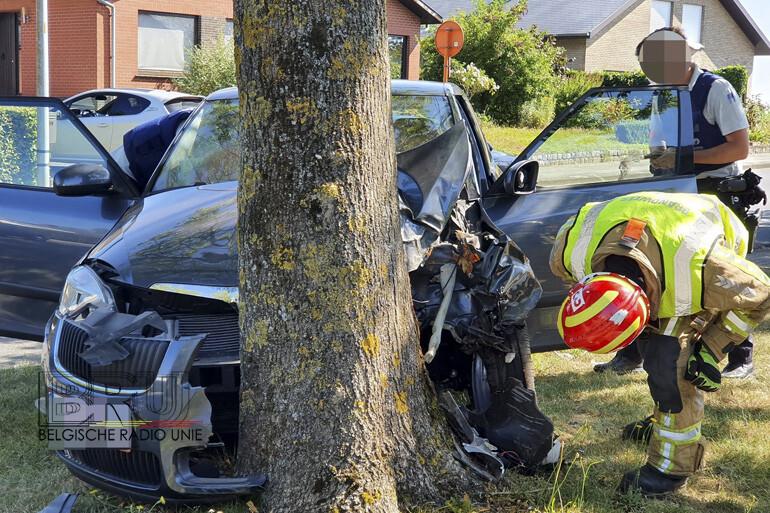 Bestuurder lichtgewond na klap tegen boom in Ieper