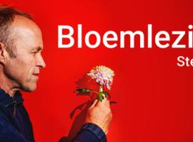 Stef Bos : intieme solo tournee door Vlaanderen